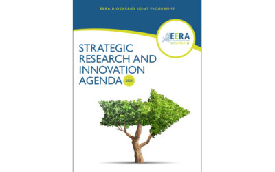 Aalborg University contributed to the new Strategic Research and Innovation Agenda (SRIA) of EERA Bioenergy JP